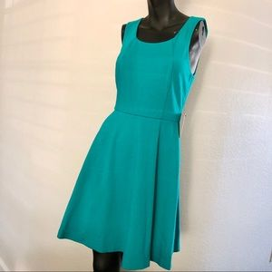 Express Fit & Flare Knit Dress